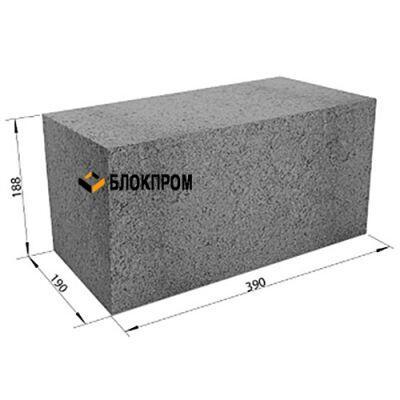 Полнотелый бетонный фундаментный блок СКЦ-1ПЛП плотность 2250 (40х20х20)